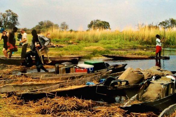 Met mokoro's over de Okavango Delta, Botswana