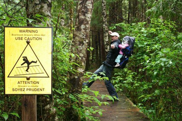 Regenwoud op Vancouver Island
