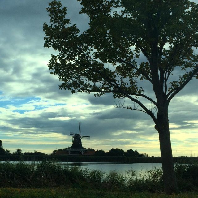 Mooi NoordHollands landschapje holland netherlands dutchlandscape windmill bestdutch instanetherlands nederlandhellip