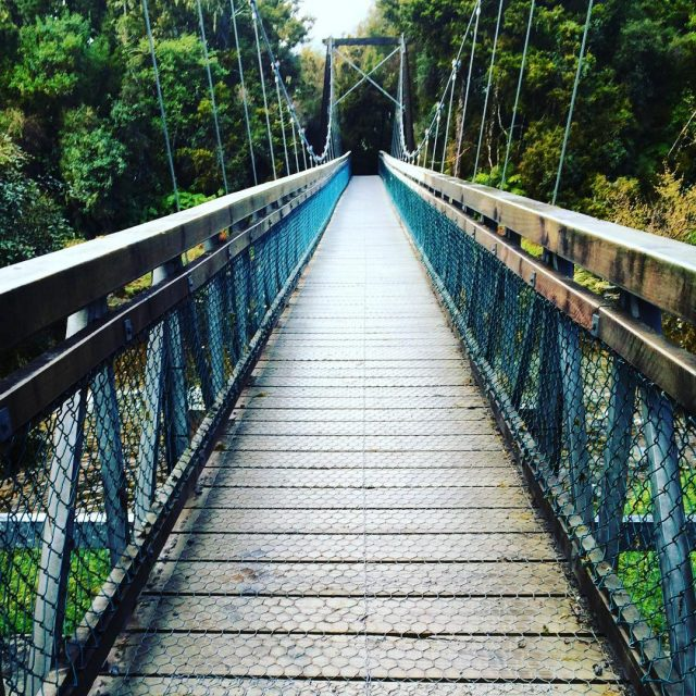 The suspension bridge near Lake Matheson on New Zealands Southhellip