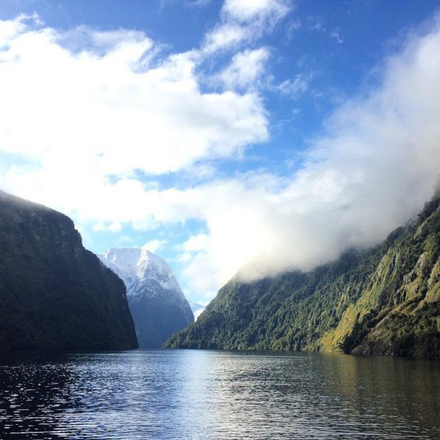The amazing Doubtful Sound I cant believe it is almosthellip