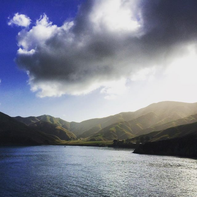 Amazing views from the ferry from Wellington to Picton crossinghellip