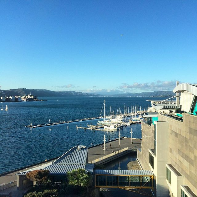 View from the observation deck of the Te Papa museumhellip