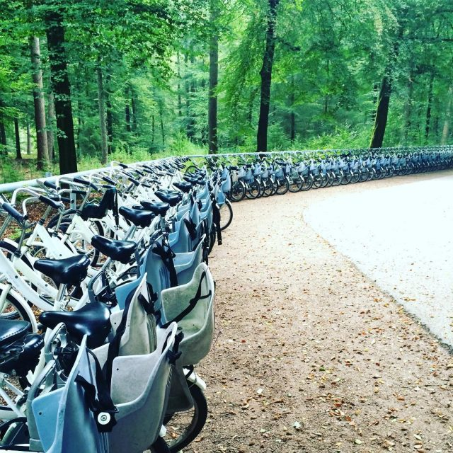 De witte fietsen van Nationaal Park De Hoge Veluwe Alshellip
