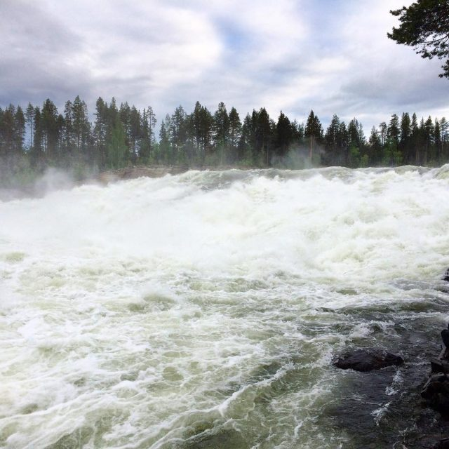 The waterfalls of Storforsen in Swedish Lapland zweden sweden storforsenhellip