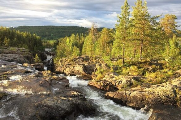 Storforsen in Zweeds Lapland