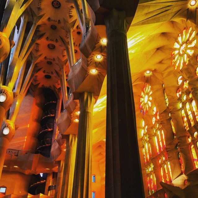 The incredible inside of the Sagrada Familia in Barcelona Thehellip