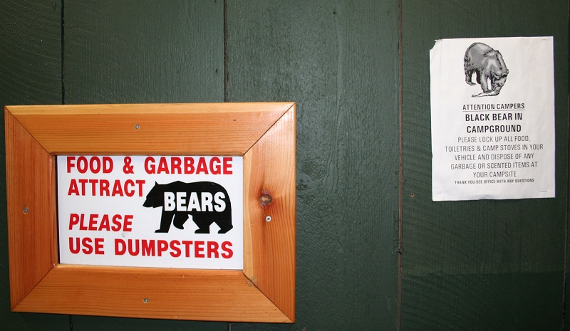 Bear warning bij Tofino