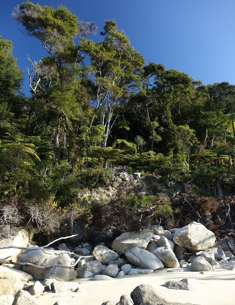 Abel Tasman Park, Bark Bay