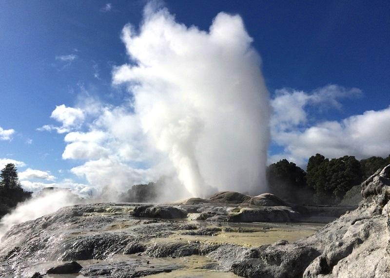 Te Puia in Rotorua