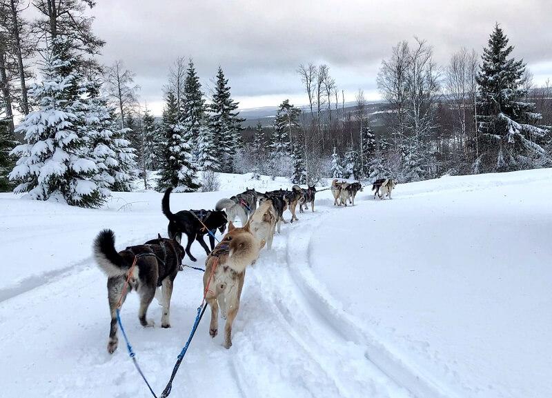 winters Zweden