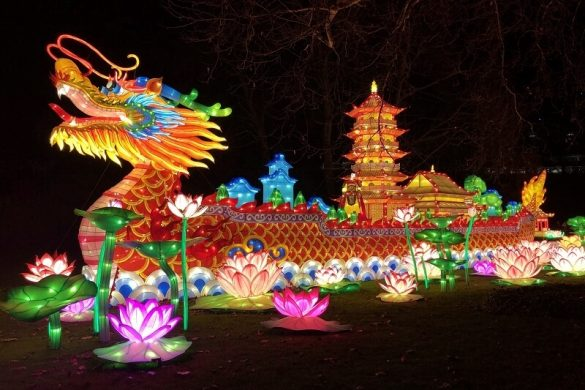 China Light ZOO