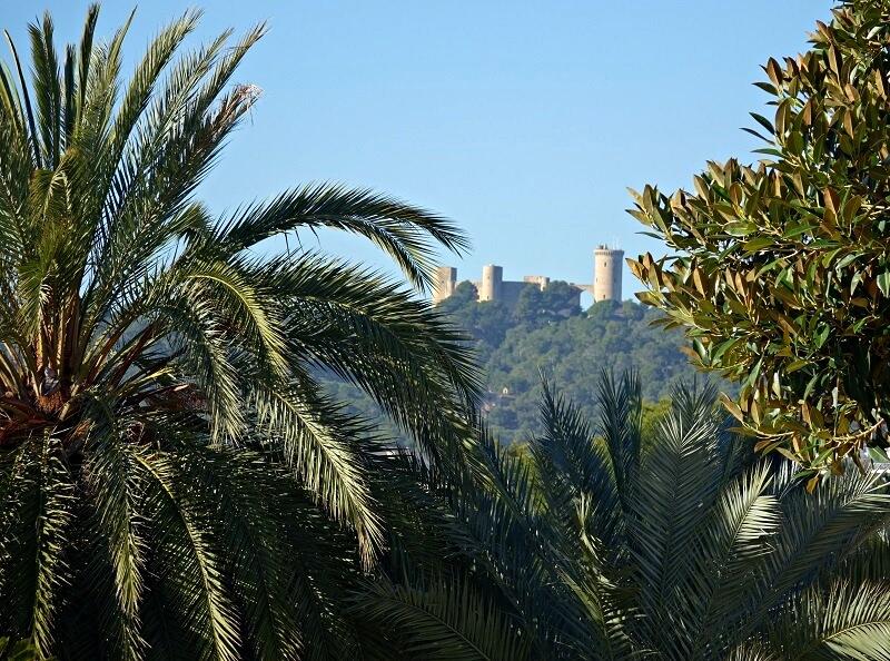 doen op Palma de Mallorca