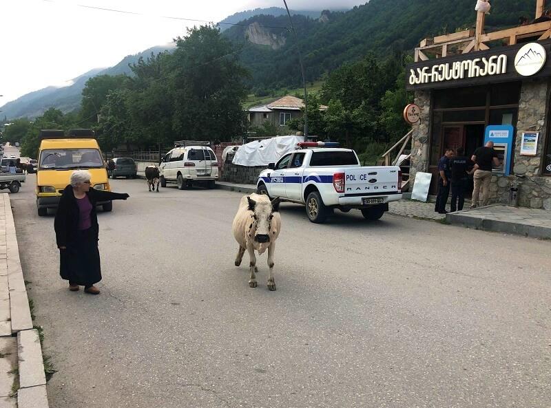 Mestia in Svaneti in Georgië