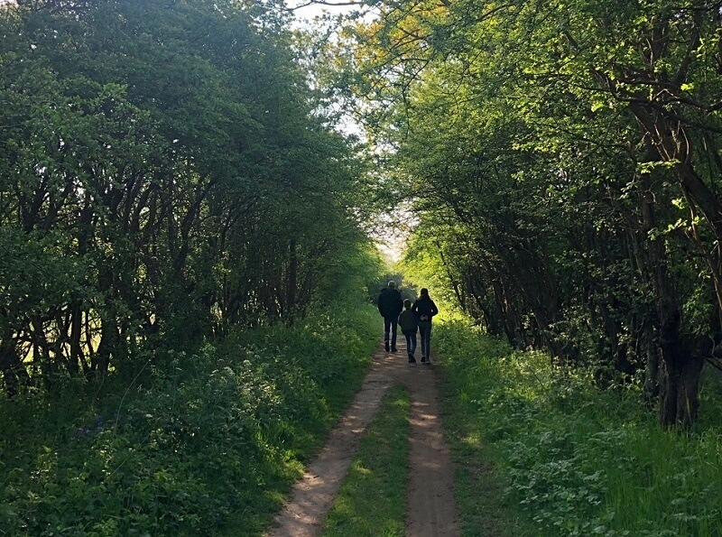 wandelen bij de Kruisberg