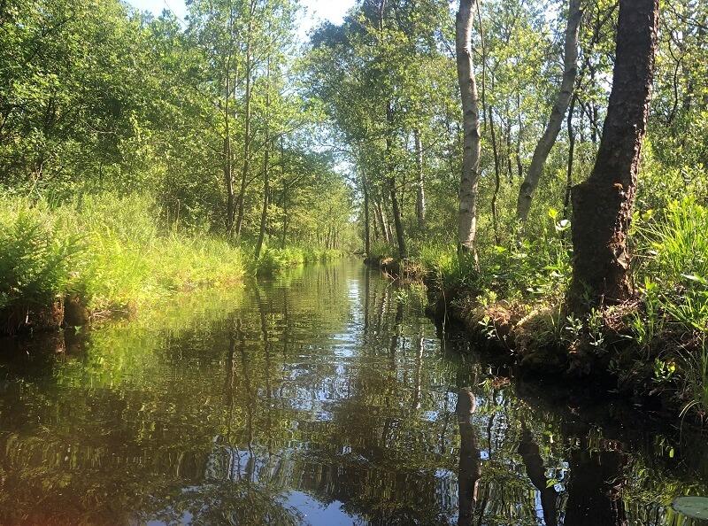kajakken in Nationaal Park Weerrribben-Wieden