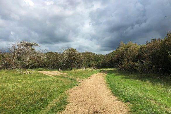 wandelingen bij Castricum
