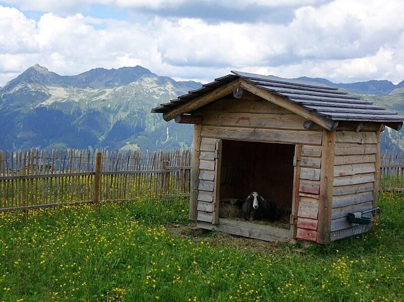 Nova Stoba Alpenwelt