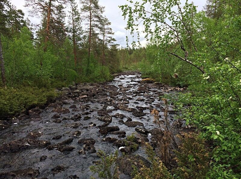 wandelen bij Jokkmokk