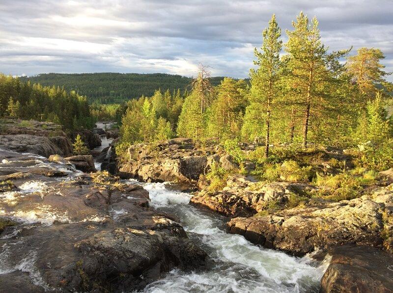 Storforsen in Zweden